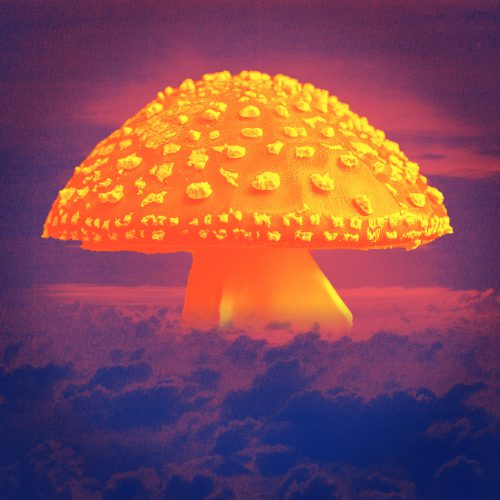 A forest mushroom styled to look like a nuclear mushroom cloud.