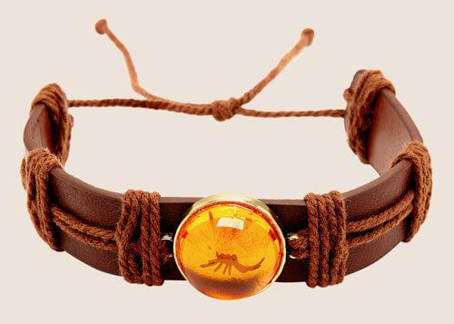 Jurassic Park amber mosquito bracelet